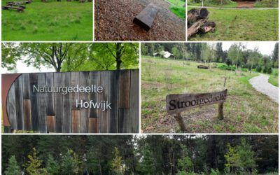 Zoek je eigen plekje uit op natuurbegraafplaats Hofwijk